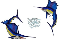 Sailfish-Group-large