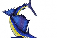 Sailfish-Right-large