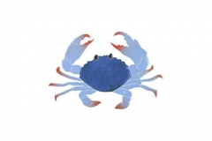 Crab-8in-blue