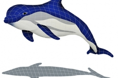 Bottlenose-Dolphin-Up-Shado