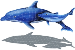 Dolphin-Pair-with-shadow