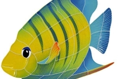 Angel-fish-large-left