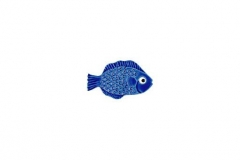 Mini-Tropical-Fish-blue