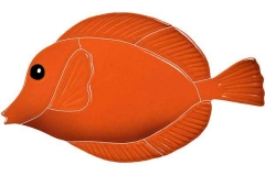 Tang-Fish-orange