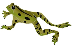 Leaping-Frog