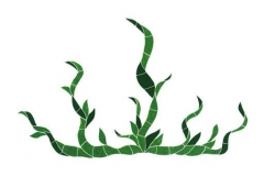 Seagrass-large