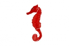 Seahorse-red