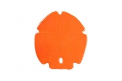 Sand-Dollar-5in-orange