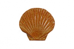Seashell-5in-brown