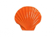 Seashell-5in-orange