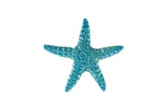 Starfish-5in-aqua