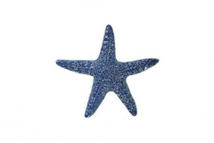 Starfish-5in-blue