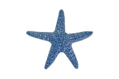 Starfish-5in--light-blue