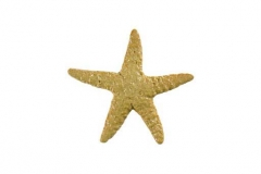 Starfish-5in-tan