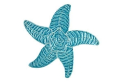 Starfish-9in-aqua