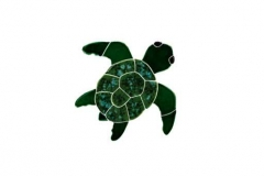 Turtle-Topview-baby-green