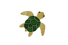 Turtle-Topview-baby-natural