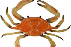 Crab-16-in-brown
