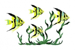 Fish-Group-in-Seagrass